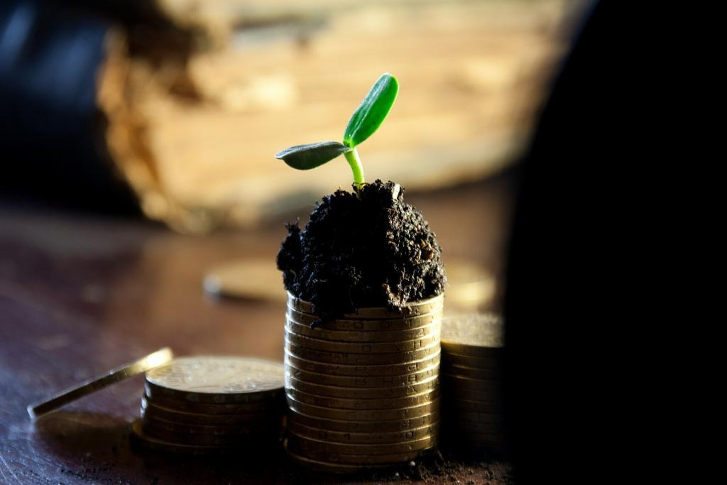 A small stack of coins with a little soil on top and a growing plant shoot, Symbolising your business' financial state.